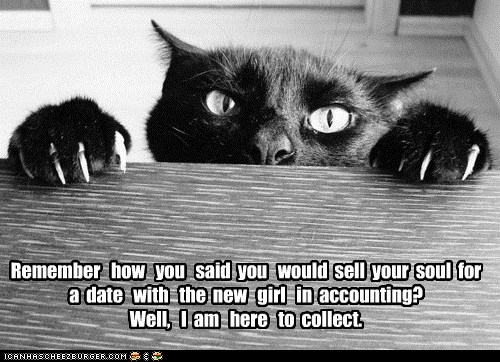 Friday Funny Fantastic Pets Fridayfunnylol